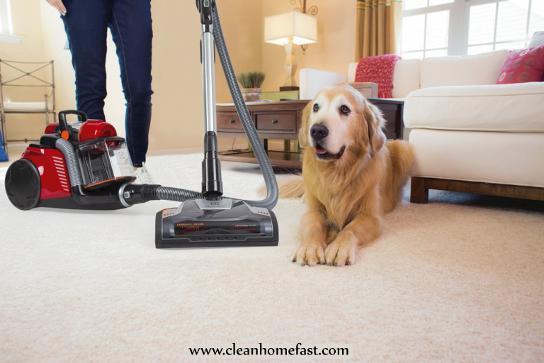 Best Vacuum Cleaner for Pets